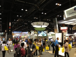 IFT2013 Main Hall