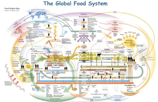 ComplexFoodSystem