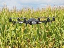 drone-corn720x540